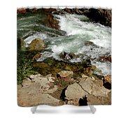 Rushing Water Glen Alpine Creek  Shower Curtain
