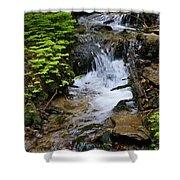 Rushing Water On Mt Spokane Shower Curtain
