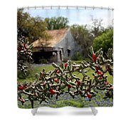 Rustic Cactus Abandoned Barn Shower Curtain