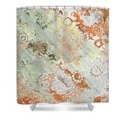 Rustic Impression Shower Curtain