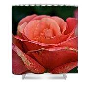 Rustic Rose Shower Curtain