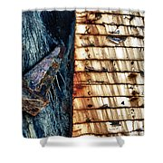 Rusting Boat Anchor Shower Curtain