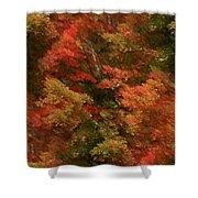 Rustling Autumn Leaves Shower Curtain