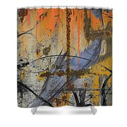 Rusty Crow  Shower Curtain