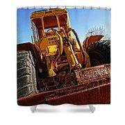 Rusty Gold Cat 824 Shower Curtain