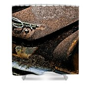 Rusty Impe Shower Curtain by DigiArt Diaries by Vicky B Fuller