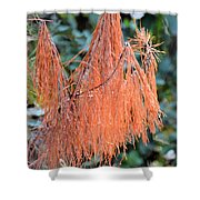Rusty Needles Shower Curtain