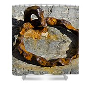 Rusty Ring Shower Curtain