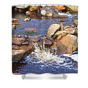 Rusty River Shower Curtain