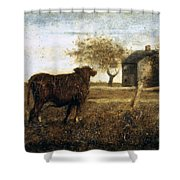 Ryder: The Pasture, C1875 Shower Curtain
