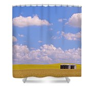 Rye, Canola And Grainery, Bruxelles Shower Curtain