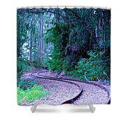 S Curve In The Forest Shower Curtain