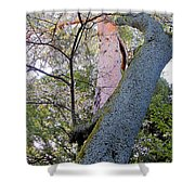 Sacred Cherry Shower Curtain