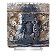 Sacred Scarab. Shower Curtain by JSM Fine Arts John Malone