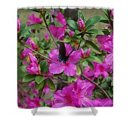 Safe Landing Shower Curtain