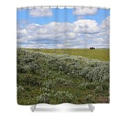 Sagebrush And Buffalo Shower Curtain