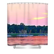 Sail Boats Pretty In Pink  Shower Curtain