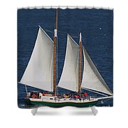 Sailboat In The San Francisco Bay . 7d7900 Shower Curtain