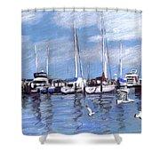 Sailboats And Seagulls Shower Curtain