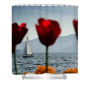 Sailing Boat And Tulip Shower Curtain