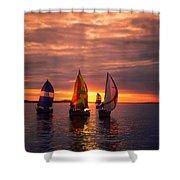 Sailing Yachts Shower Curtain