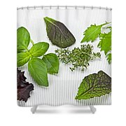 Salad Greens And Spices Shower Curtain by Joana Kruse