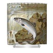 Salmon, C1900 Shower Curtain