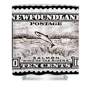 Salmon King Of The Rivers Shower Curtain
