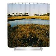 Salt Marsh, Assateague Island, Virginia Shower Curtain