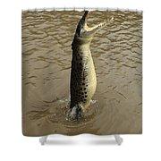 Salt Water Crocodile Shower Curtain