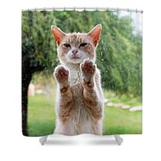 Salute Cat Shower Curtain
