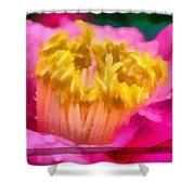 Sample-camellia Shower Curtain