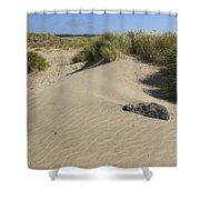 Sand And Grass Dunes Shower Curtain