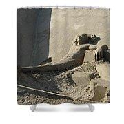 Sand Man Shower Curtain