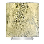 Sand Painting 2 Shower Curtain