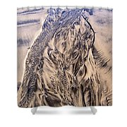 Sand Painting 55 Shower Curtain