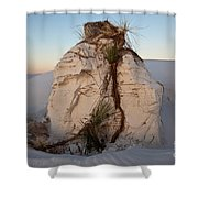 Sand Pedestal With Yucca Shower Curtain