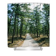 Sand Road Through The Pine Barrens, New Shower Curtain