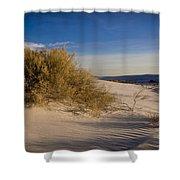 Sand Shrub 1 Shower Curtain