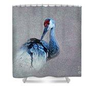 Sandhill Crane 2 Shower Curtain
