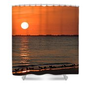 Sandpipers At Sundown Shower Curtain