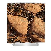 Sandstone And Pebbles Shower Curtain by Gary Whitton