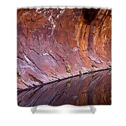 Sandstone Reality Shower Curtain