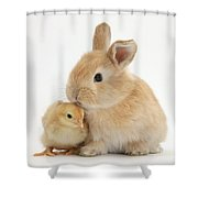 Sandy Rabbit And Yellow Bantam Chick Shower Curtain