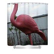 Santa Bird Shower Curtain