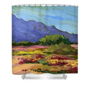 Santa Rosa Mountains In Spring Shower Curtain