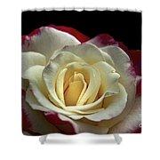 Sarah's Rose Shower Curtain
