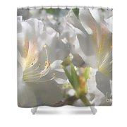 Satin White Azaleas Shower Curtain