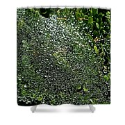 Saturated Spider Web Shower Curtain