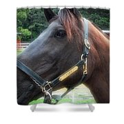 Sc-049-12 Effects Shower Curtain
